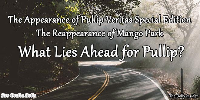 Pullip Veritas Special Edition, Mango Park – What Lies Ahead for Pullip?