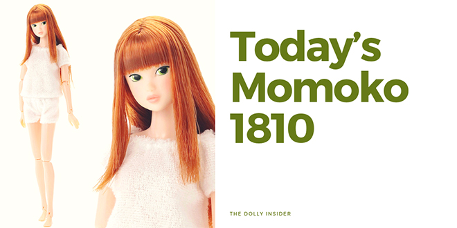 Today's Momoko 1810 by PetWORKs